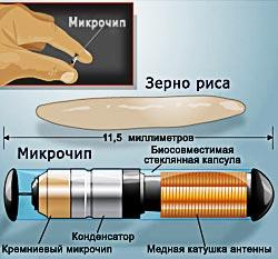Микрочип - капсула из биосовместимого стекла